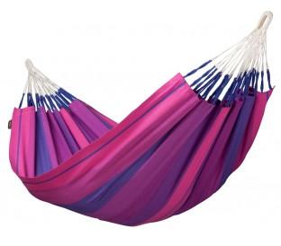 Orquidea Purple Simple
